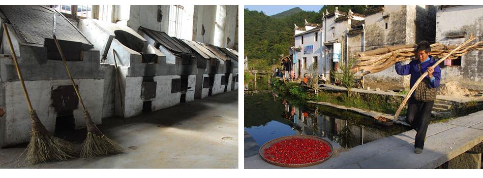 Qu Tea Village life